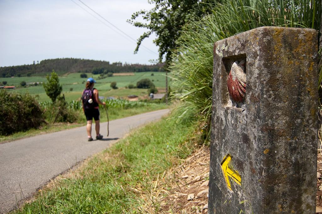 Camino de Santiago @ Santiago de Compostela (Galicia)